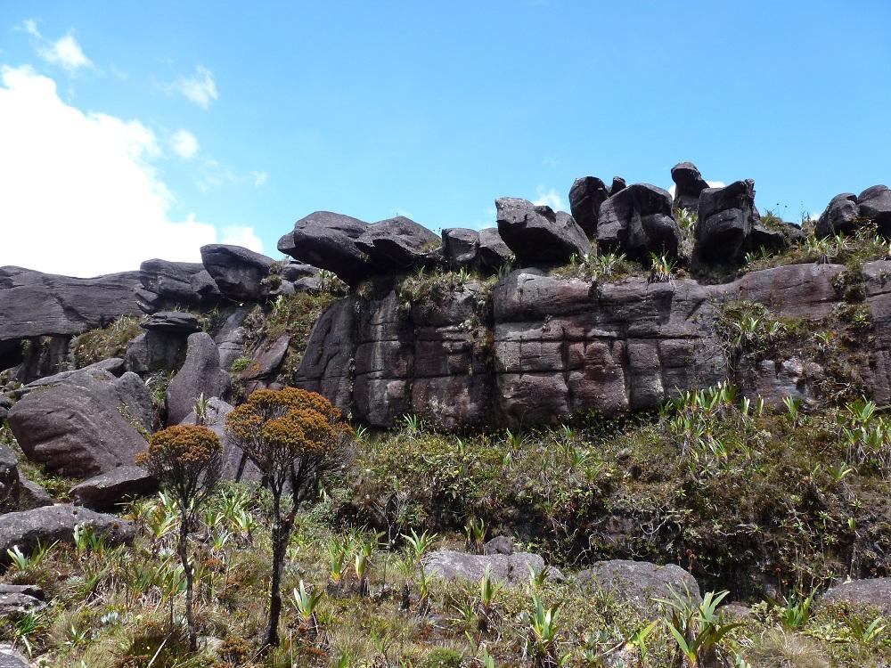 Monte Roraima – sommet