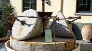 Almazara: moulin à huile