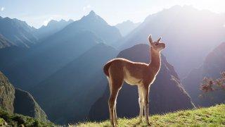 Le Trek Ausangate au Sud-Est du Pérou en BD !