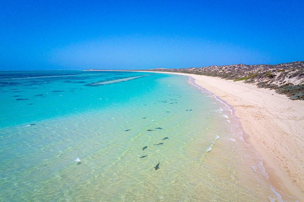 Ningaloo Reef – Indian Ocean Drive en Australie © MXW Photography