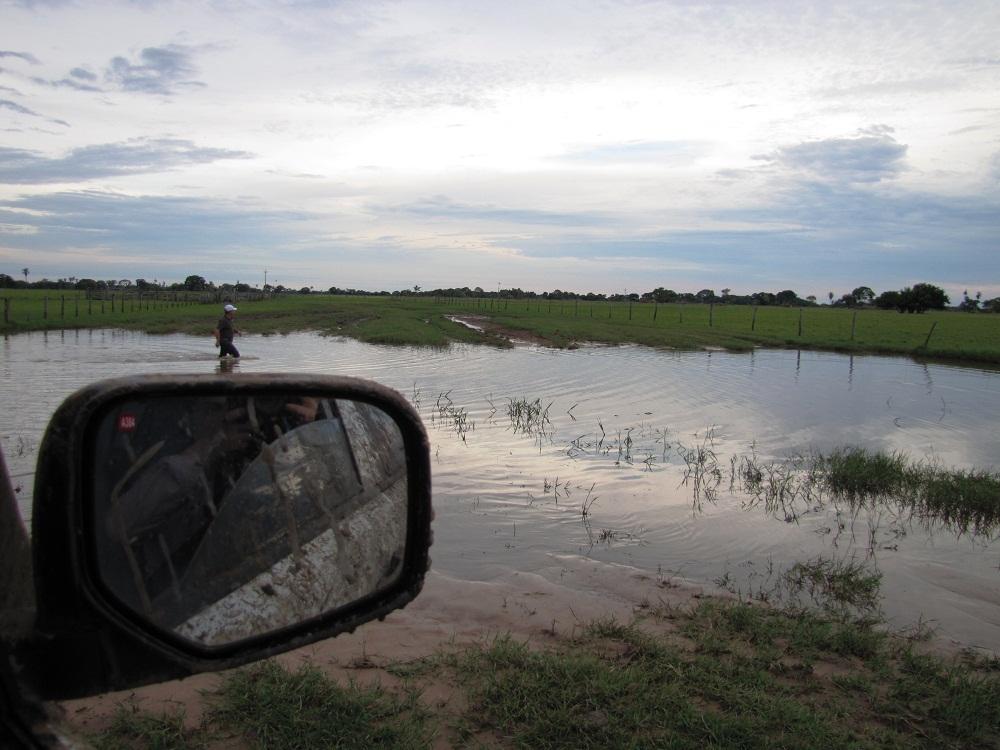 Retour en 4×4 – Pantanal, Rio Negro
