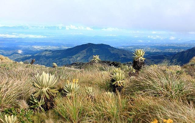 Parc National Puracé, Cauca – Colombie