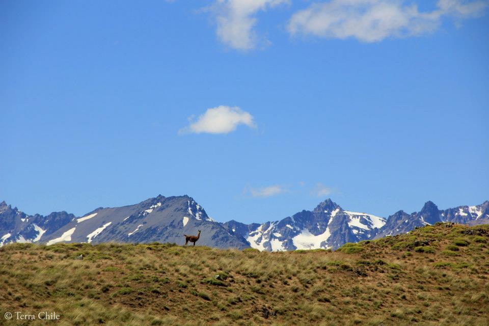 Paso Roballo – Patagonie Chili