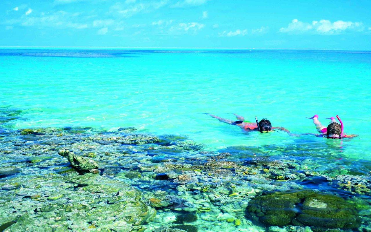 Plongée à la Grande Barrière de corail – Australie