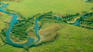 Argentine : la réserve naturelle Esteros del Ibera
