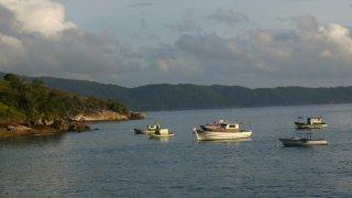 Pêche sur la côte brésilienne