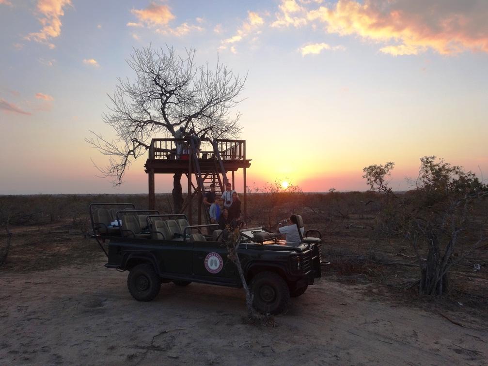 Session coucher de soleil dans la réserve de Klaserie