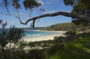 Jervis Bay – NSW, Australie