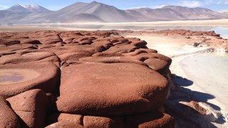San Pedro de Atacama au Chili : lagunes, salars et flamants roses