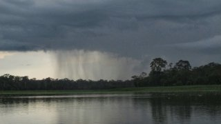Pluie sur le Lac Purura, jungle amazonienne, Pérou