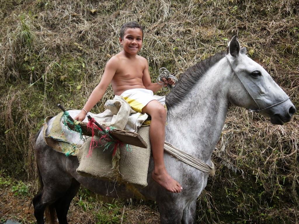 La route du café à cheval – Colombie