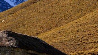 Randonnée dans la Cordillère Royale, Bolivie