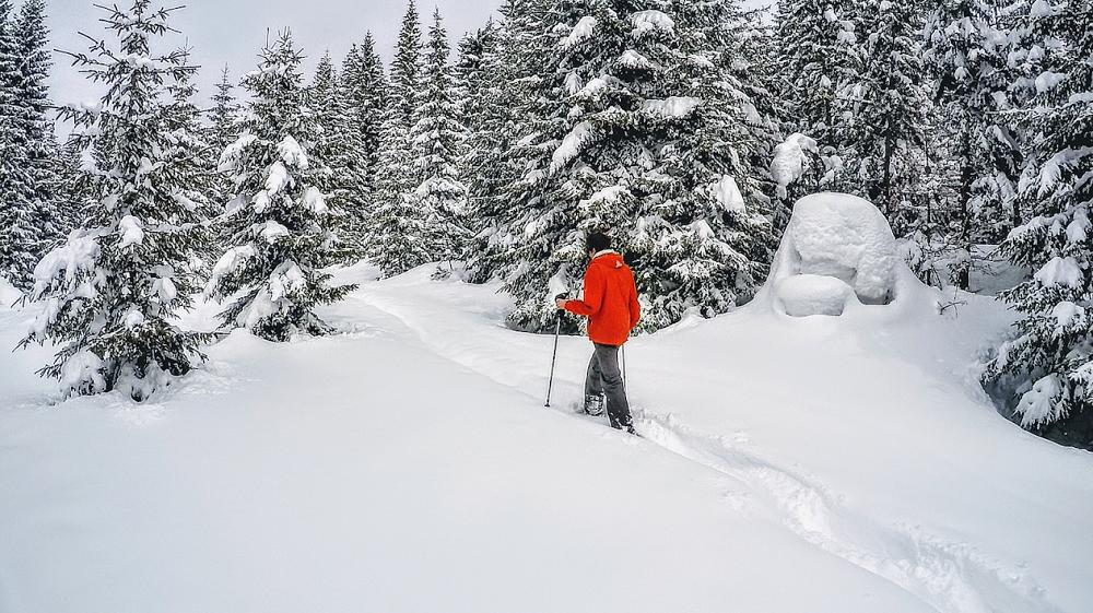 Chalets, forêts et sommets enneigés, un cadre idéal pour une randonnée !