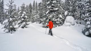 Top 5 des activités hivernales en Croatie, Slovénie et au Monténégro !