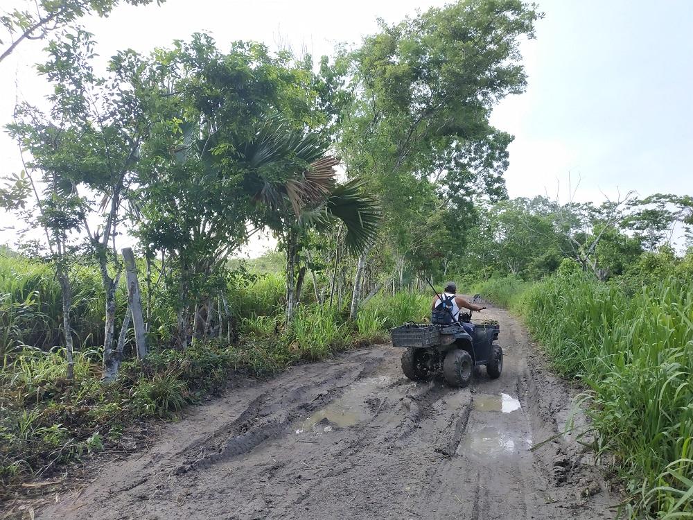 Quad Rio Bec – voyage au Mexique