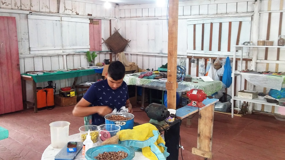 Atelier – Rio Negro, Acajatuba
