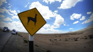 Route vers la Canyon de Colca – Pérou
