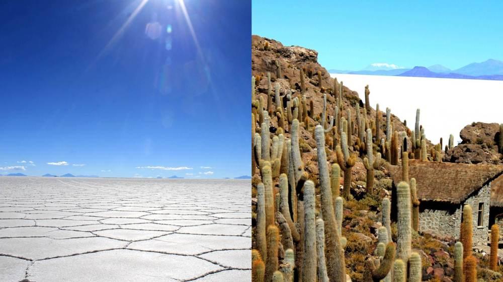 Salar Uyuni & île Incahuasi – Bolivie