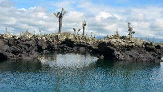 Séjour sur les îles Galapagos