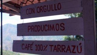 Tarrazú, dénomination d'origine du café made in Costa Rica