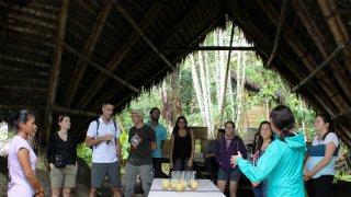Tour cacao et chocolat, Equateur