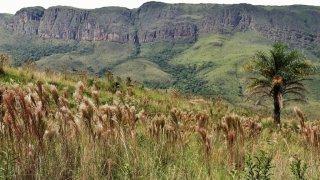 Voyage dans la région Minas Gerais – Brésil