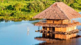 Pérou : immersion dans la jungle amazonienne à Iquitos