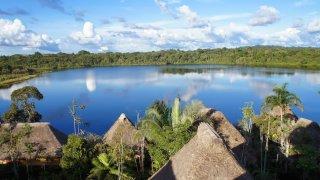 Vue depuis la tour d'observation du Lodge – Napo Wildlife Center