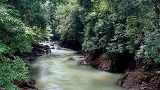 Rivière Costa Rica